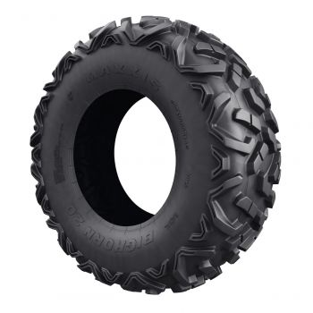 X rs Front and Rear Tire - Maxxis Bighorn